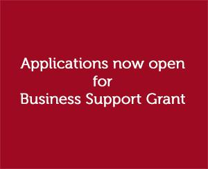 Coronavirus Business Support Grant