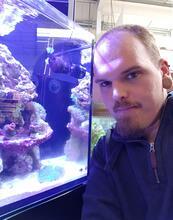 Affinity Aquarium Solutions